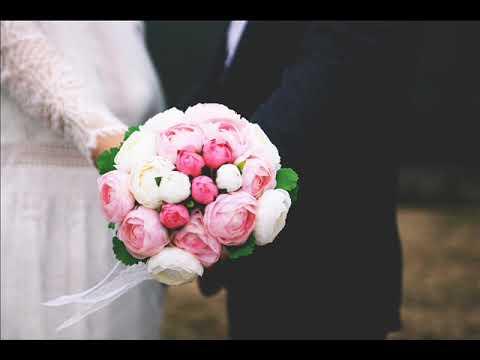 زواج الاجانب –  عنوان مكتب توثيق الخارجيه بقنا  ألمستشاره  هيأم جمعه سألم      {01061680444}   {01111135275}